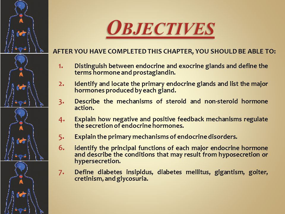 Objectives Distinguish between endocrine and exocrine glands and define the terms hormone and prostaglandin.
