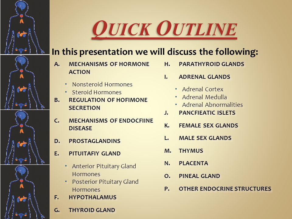 Quick Outline MECHANISMS OF HORMONE ACTION PARATHYROID GLANDS