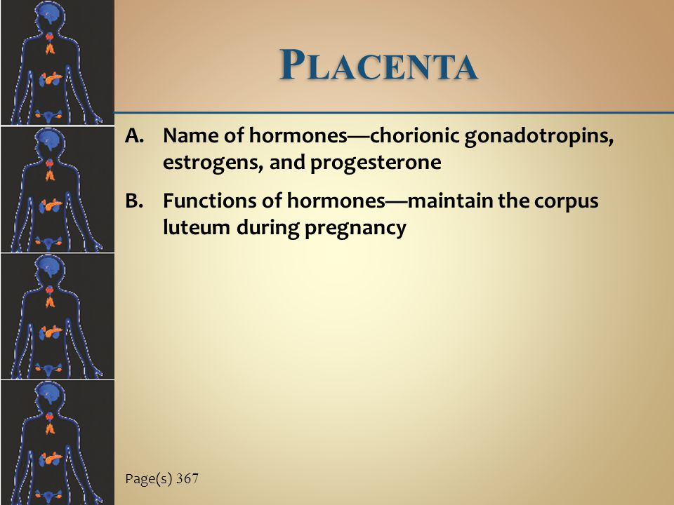 Placenta Name of hormones—chorionic gonadotropins, estrogens, and progesterone. Functions of hormones—maintain the corpus luteum during pregnancy.