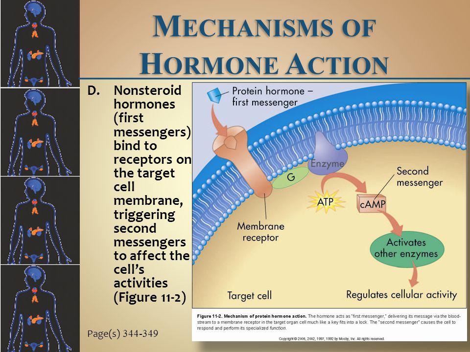 Mechanisms of Hormone Action