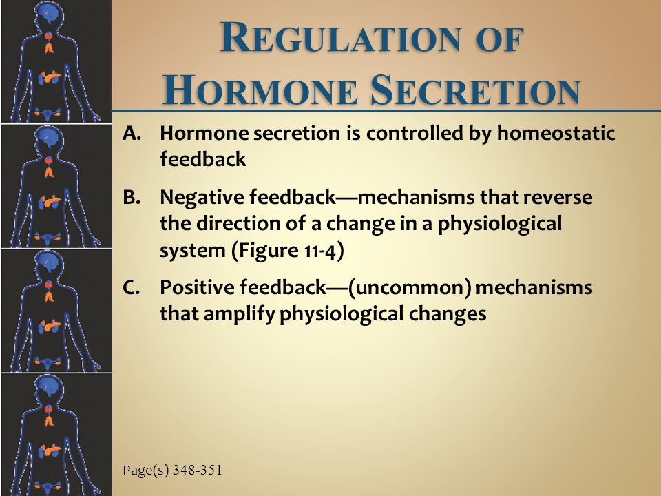 Regulation of Hormone Secretion