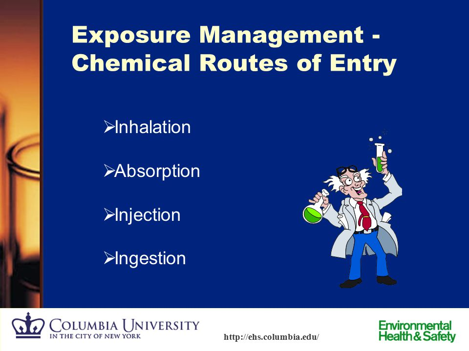 Exposure Management - Chemical Routes of Entry