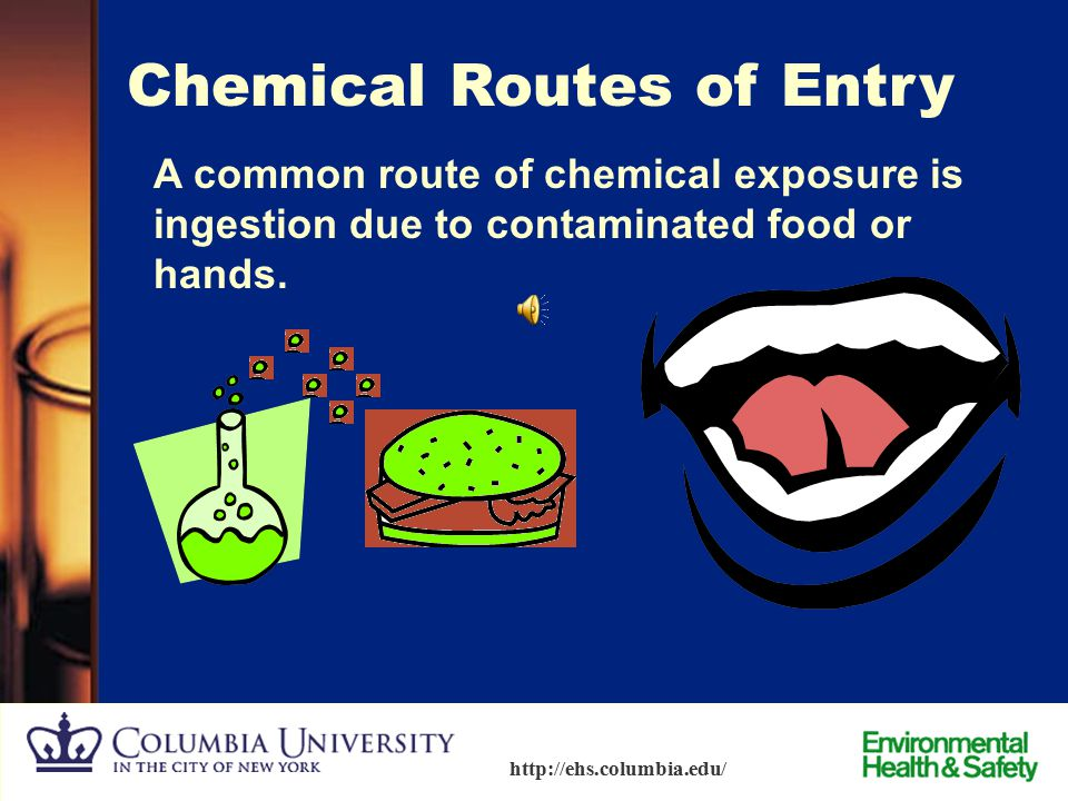 Chemical Routes of Entry