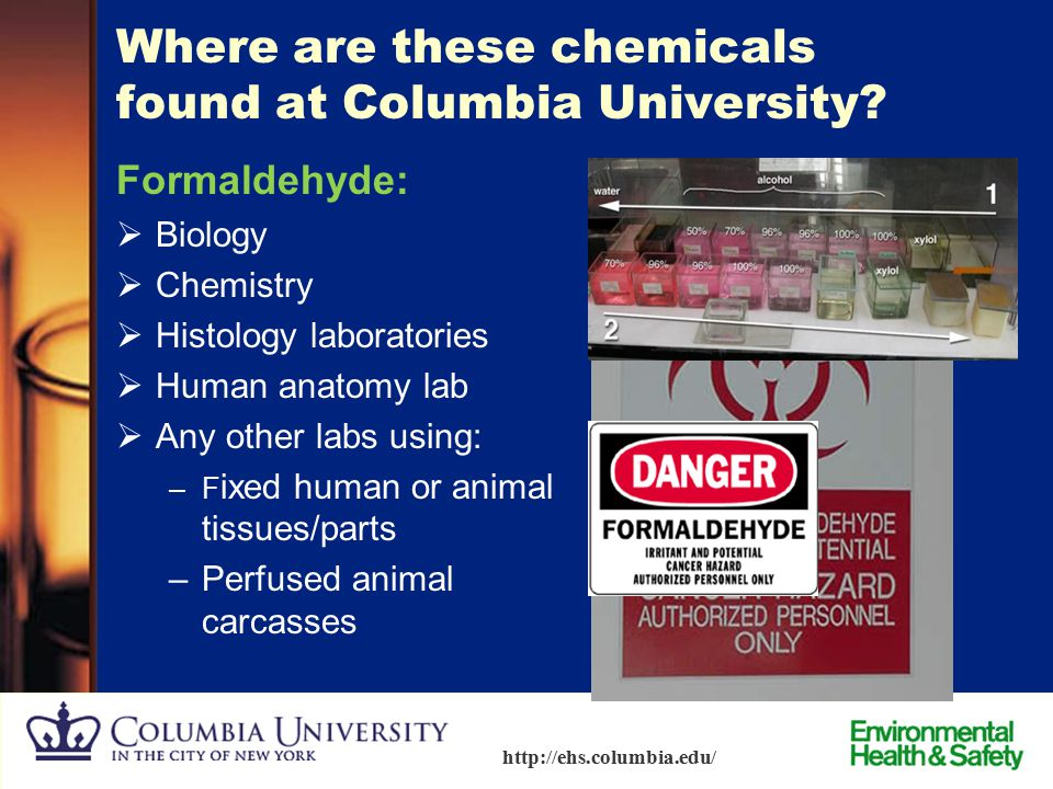 Where are these chemicals found at Columbia University