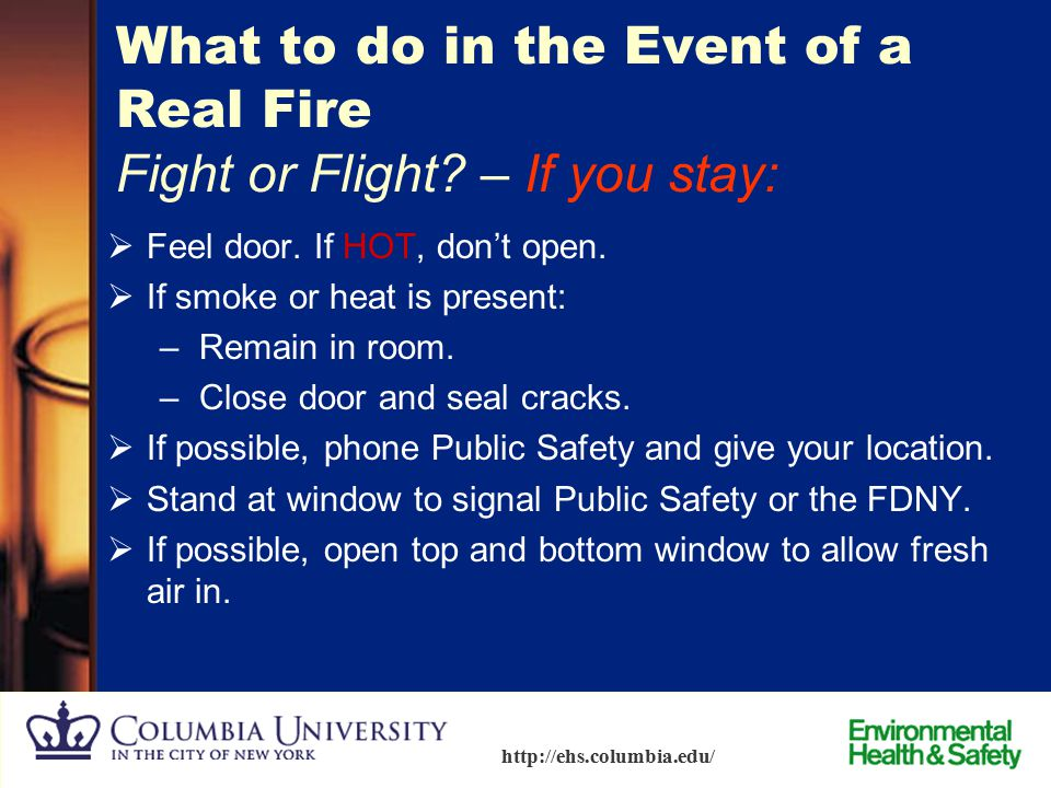 What to do in the Event of a Real Fire Fight or Flight – If you stay: