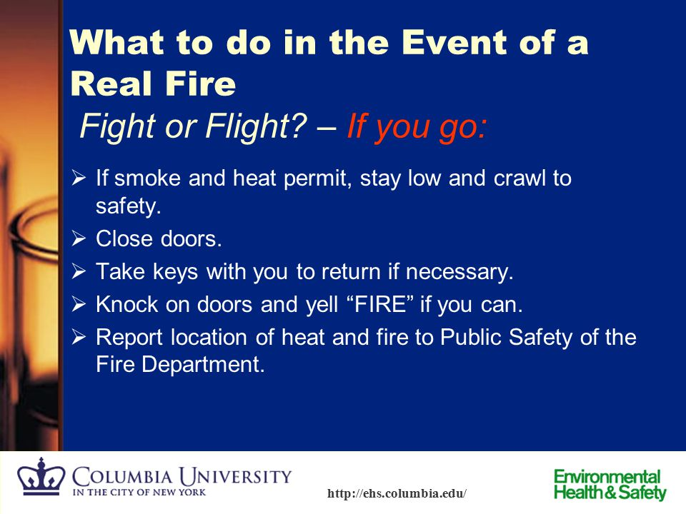 What to do in the Event of a Real Fire Fight or Flight – If you go: