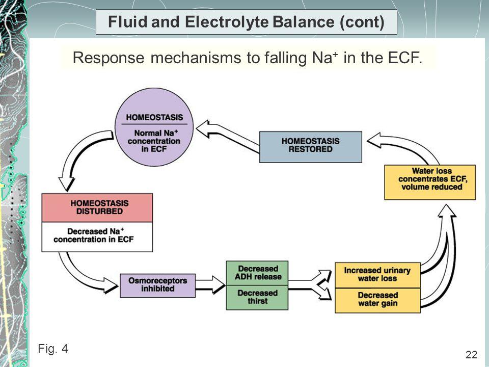 unit 13 physiology of fluid balance Water, electrolyte, acid-base balance jason moir loading unit 152 fluid human physiology 6,987 views.