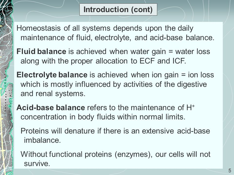 Introduction (cont) Homeostasis of all systems depends upon the daily maintenance of fluid, electrolyte, and acid-base balance.