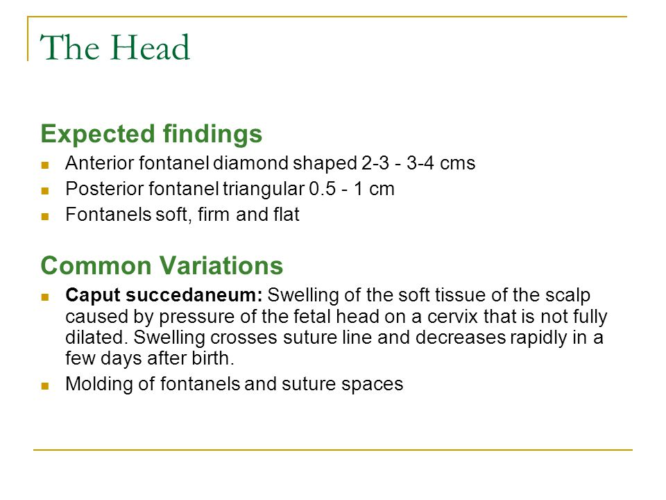 The Head Expected findings Common Variations