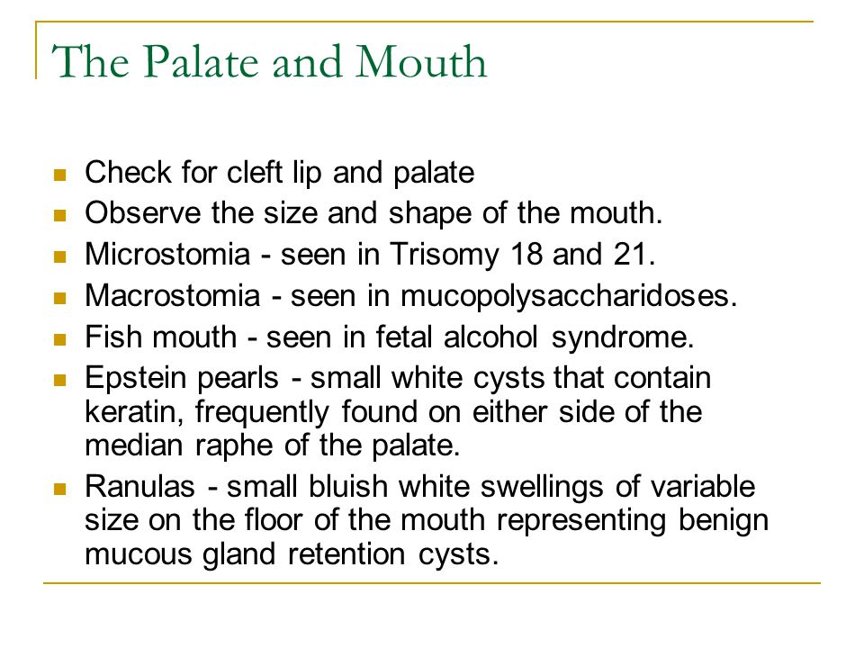 The Palate and Mouth Check for cleft lip and palate
