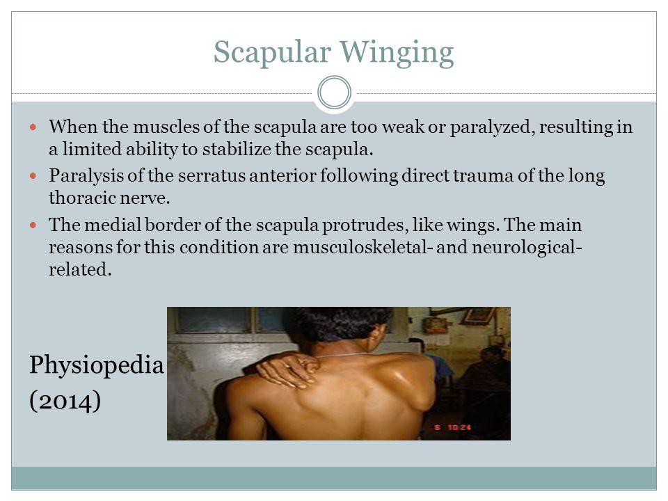 Scapular Winging Physiopedia (2014)