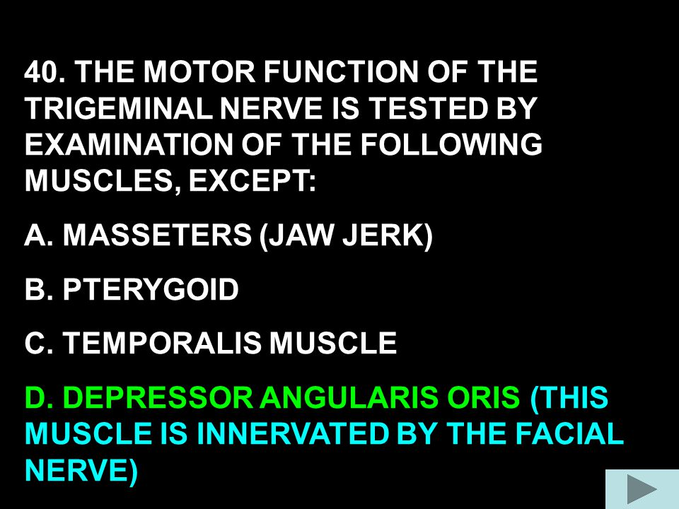 40. THE MOTOR FUNCTION OF THE TRIGEMINAL NERVE IS TESTED BY EXAMINATION OF THE FOLLOWING MUSCLES, EXCEPT: