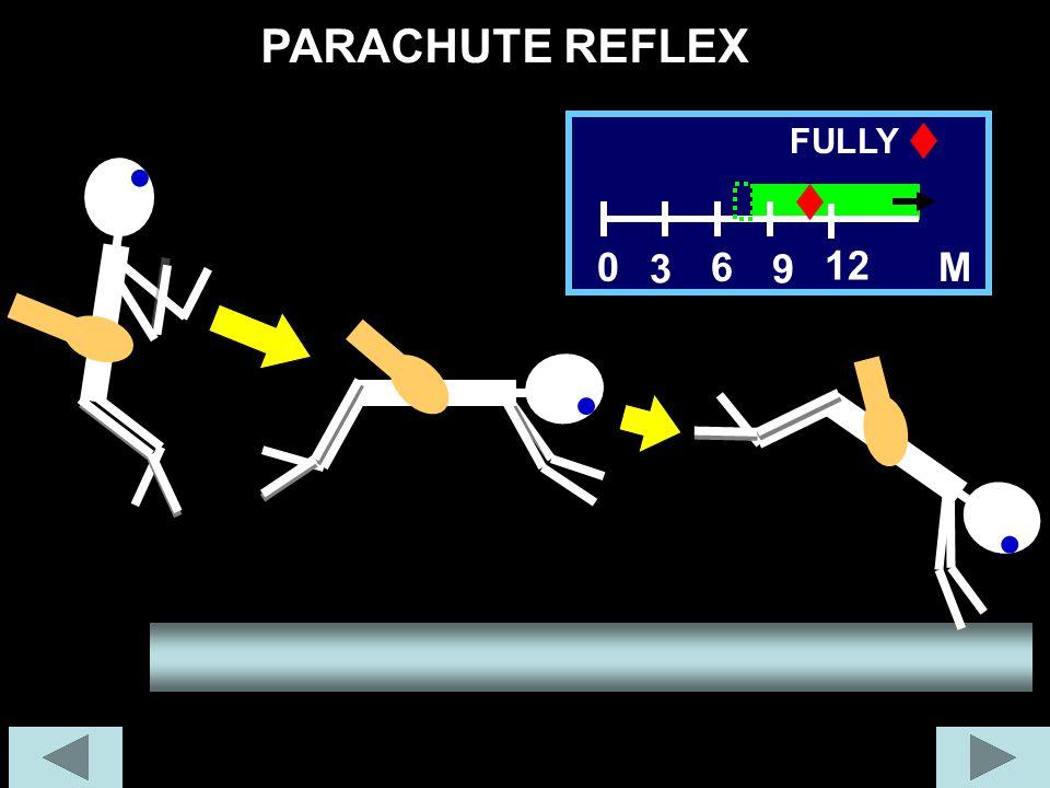 PARACHUTE REFLEX 6 M 12 FULLY 3 9