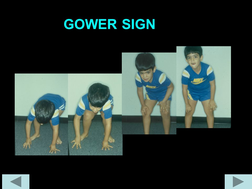GOWER SIGN