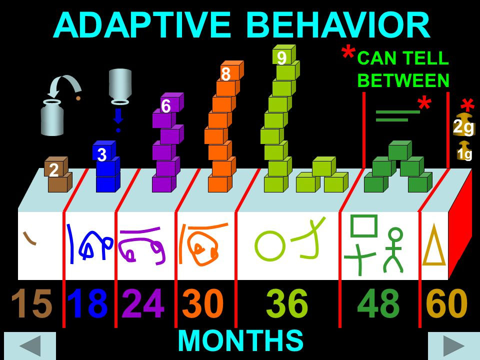 * * * 15 18 24 30 36 48 60 ADAPTIVE BEHAVIOR MONTHS 9 CAN TELL BETWEEN