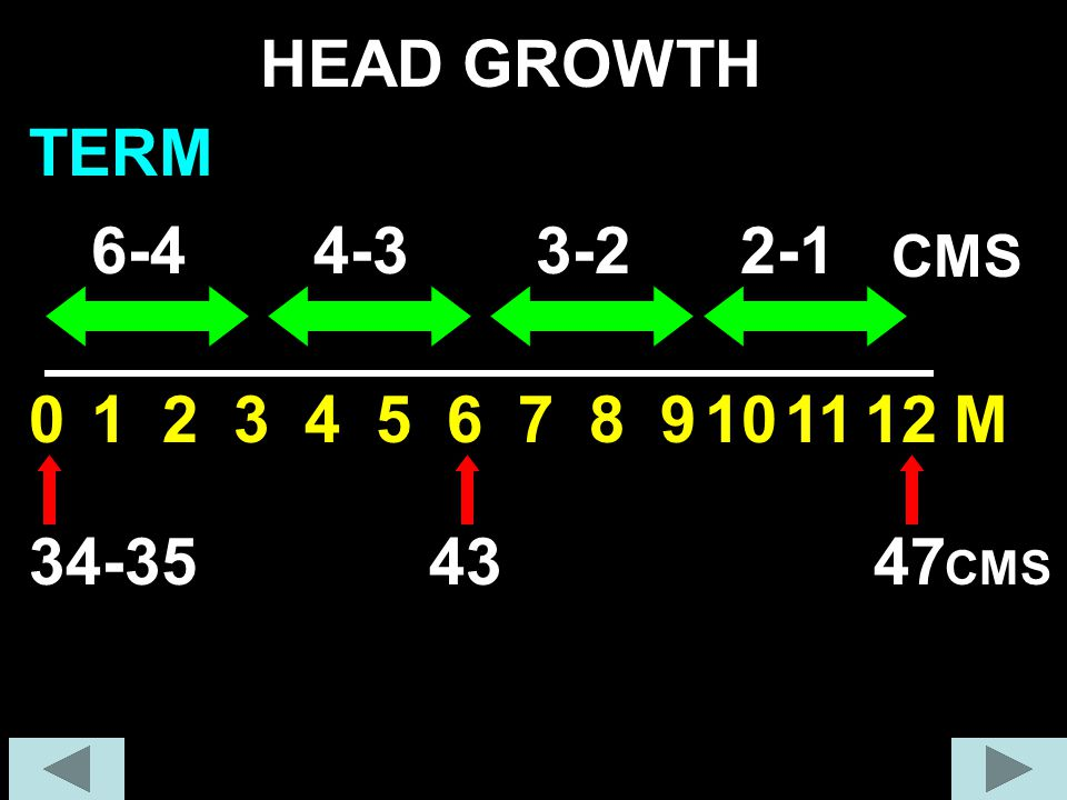 HEAD GROWTH TERM 6-4 4-3 3-2 2-1 1 2 3 4 5 6 7 8 9 10 11 12 M 34-35 43