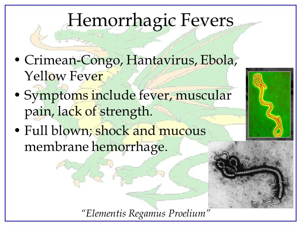 Hemorrhagic Fevers Crimean-Congo, Hantavirus, Ebola, Yellow Fever