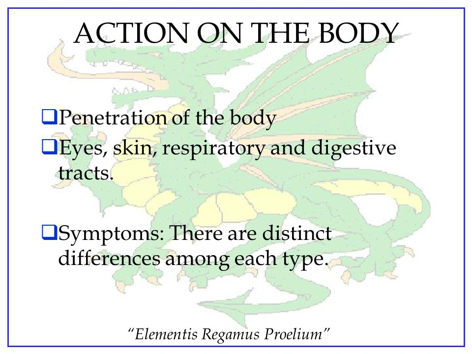 ACTION ON THE BODY Penetration of the body