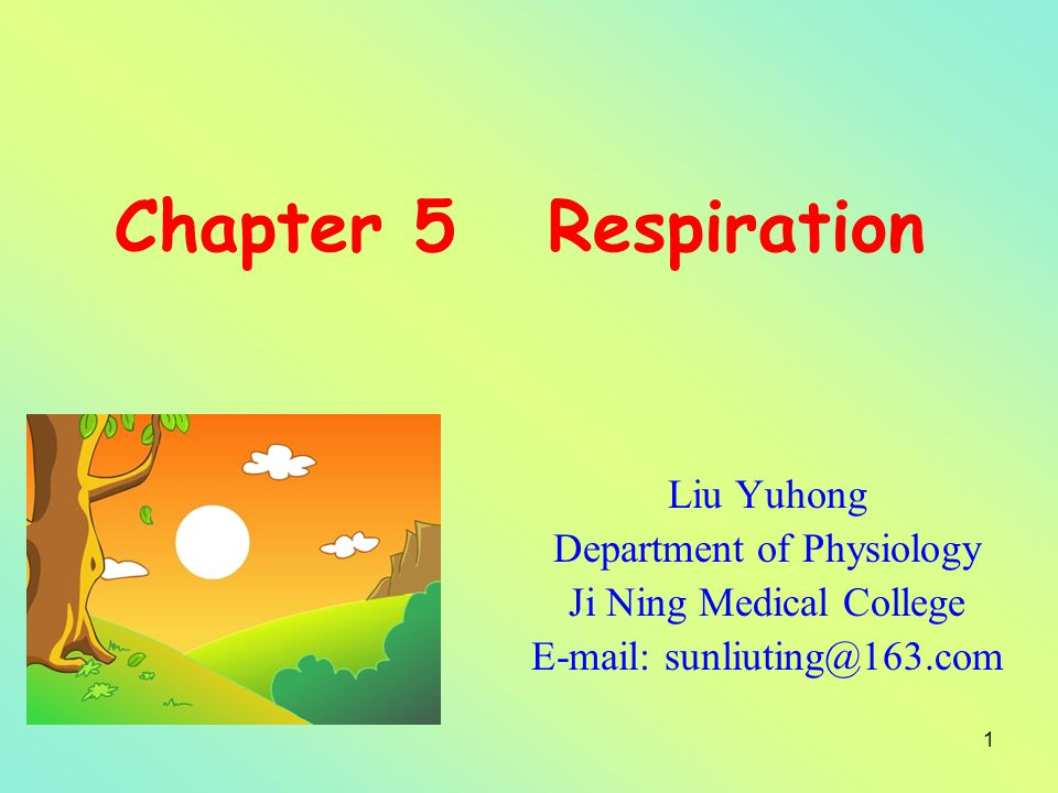 Chapter 5 Respiration Liu Yuhong Department of Physiology