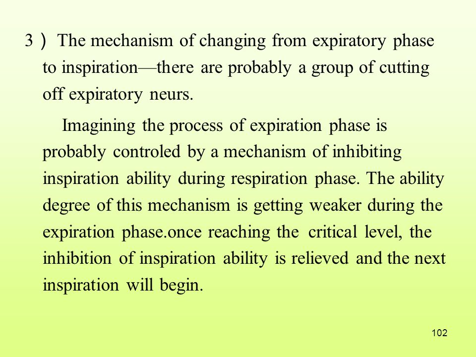3) The mechanism of changing from expiratory phase to inspiration—there are probably a group of cutting off expiratory neurs.