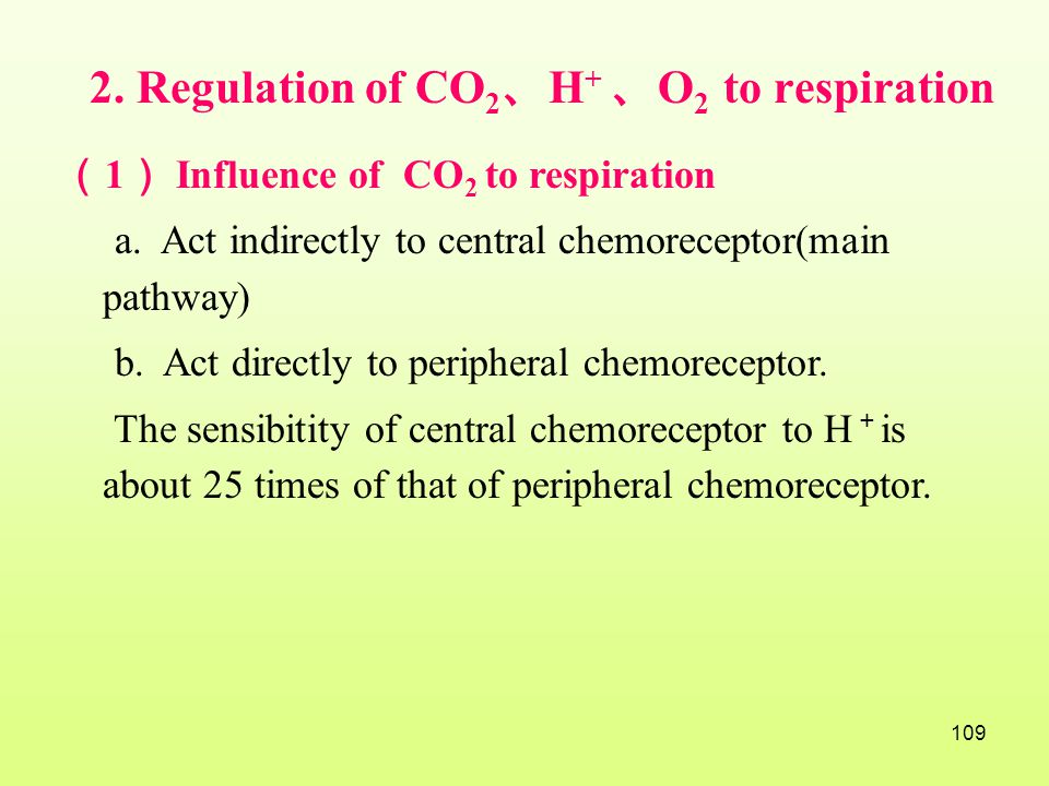 2. Regulation of CO2、H+ 、O2 to respiration