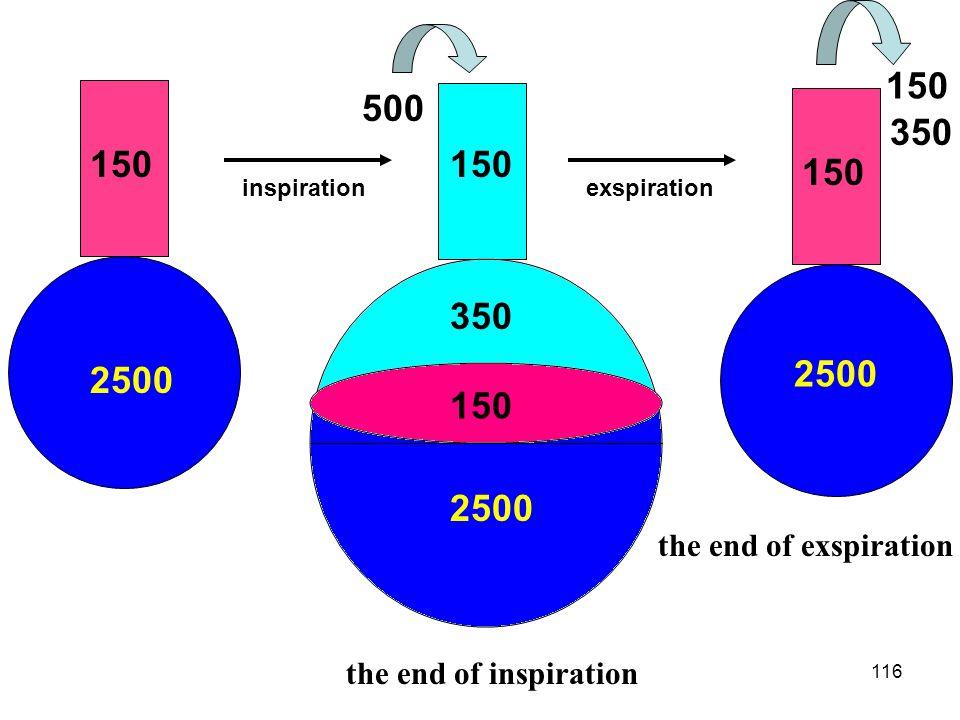 150 500. 350. 150. 150. 150. inspiration. exspiration. 350. 2500. 2500. 150. 2500. the end of exspiration.