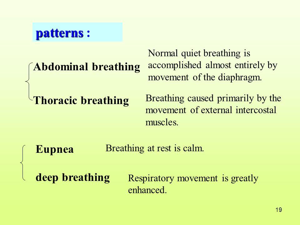 patterns : Abdominal breathing Thoracic breathing Eupnea