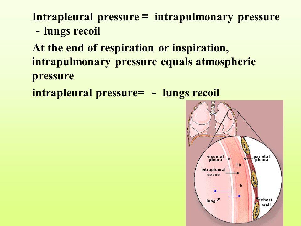 Intrapleural pressure= intrapulmonary pressure-lungs recoil
