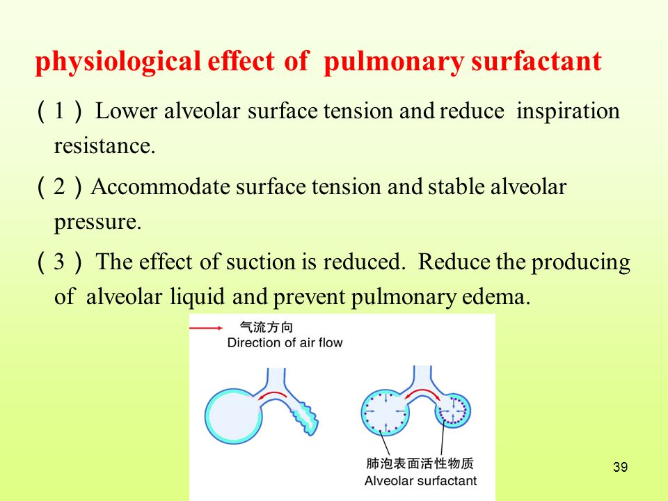 physiological effect of pulmonary surfactant