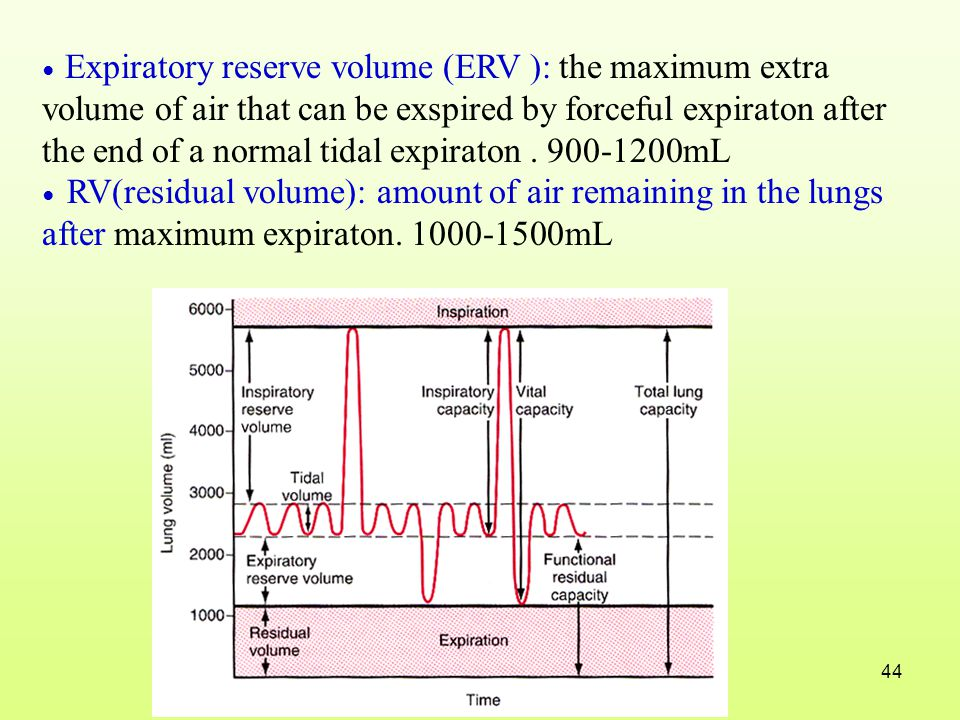 ● Expiratory reserve volume (ERV ): the maximum extra volume of air that can be exspired by forceful expiraton after the end of a normal tidal expiraton . 900-1200mL