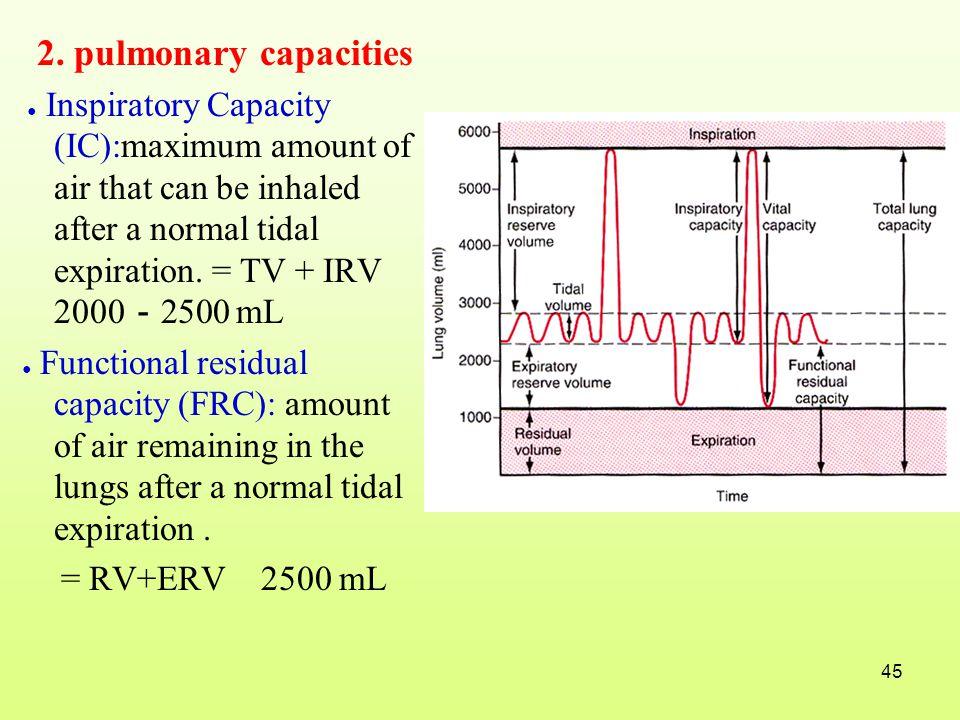 2. pulmonary capacities