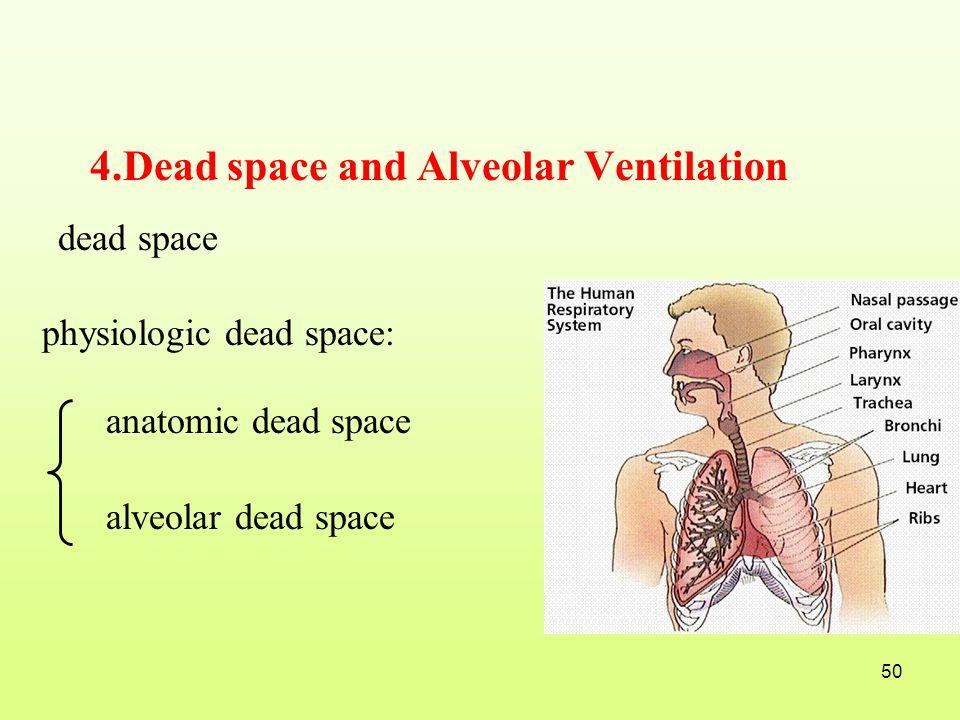 4.Dead space and Alveolar Ventilation