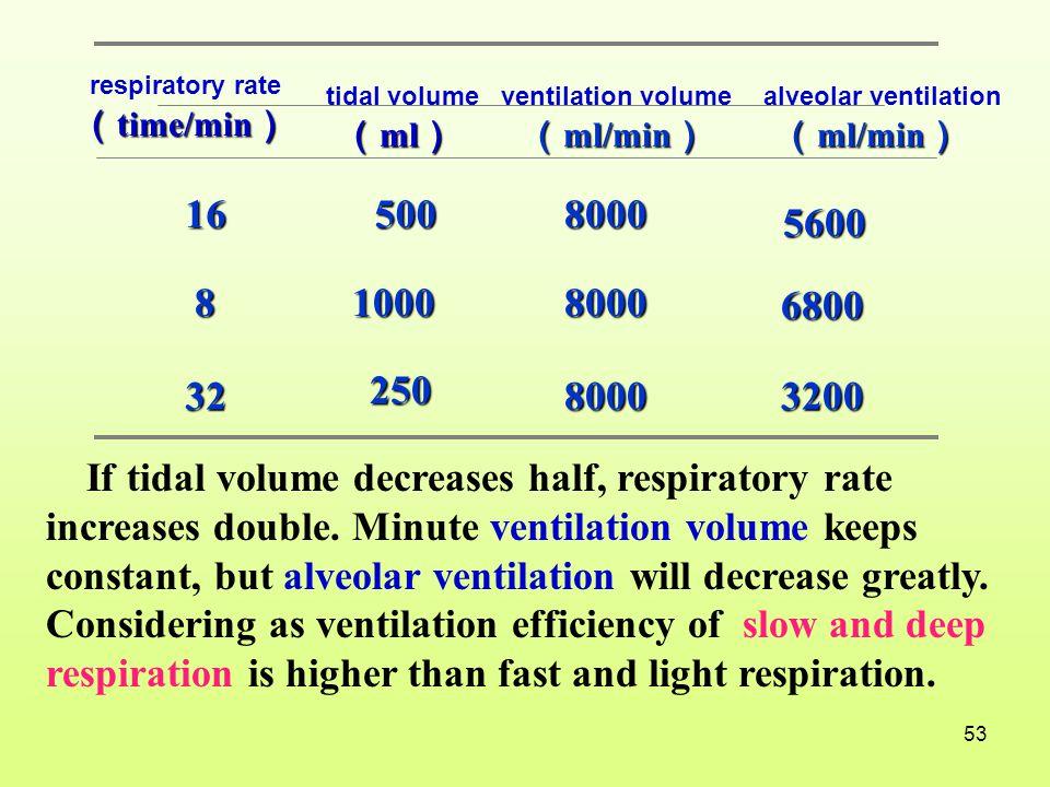 respiratory rate (time/min) tidal volume. (ml) ventilation volume. (ml/min) alveolar ventilation.