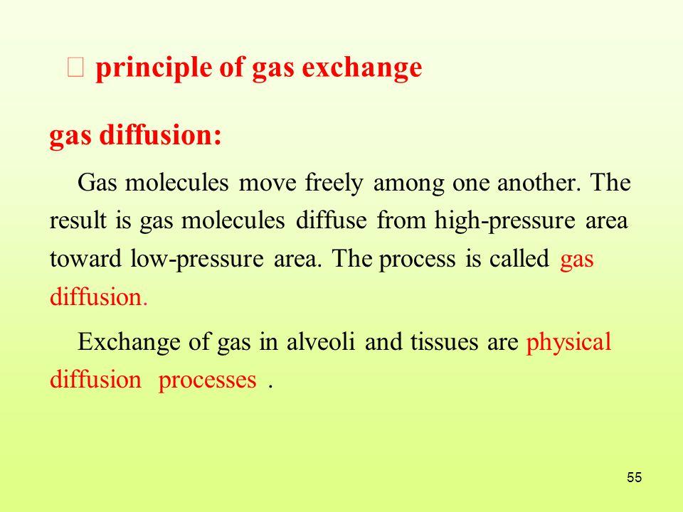 Ⅰ principle of gas exchange