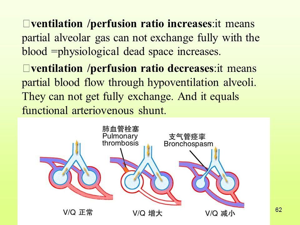 ★ventilation /perfusion ratio increases:it means partial alveolar gas can not exchange fully with the blood =physiological dead space increases.