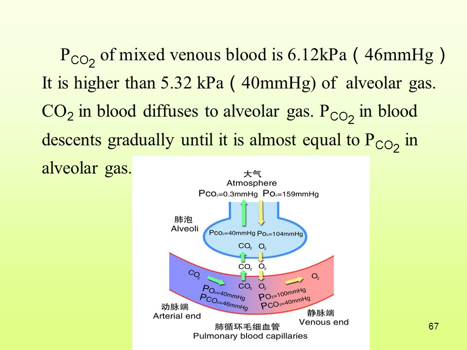 PCO2 of mixed venous blood is 6. 12kPa(46mmHg) It is higher than 5