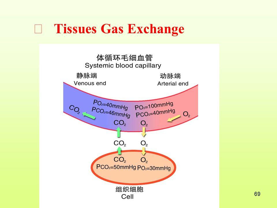 Ⅲ Tissues Gas Exchange