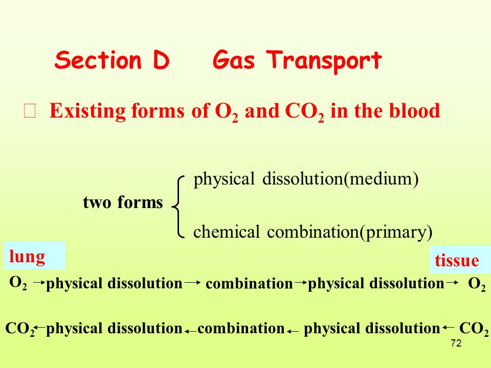 Section D Gas Transport