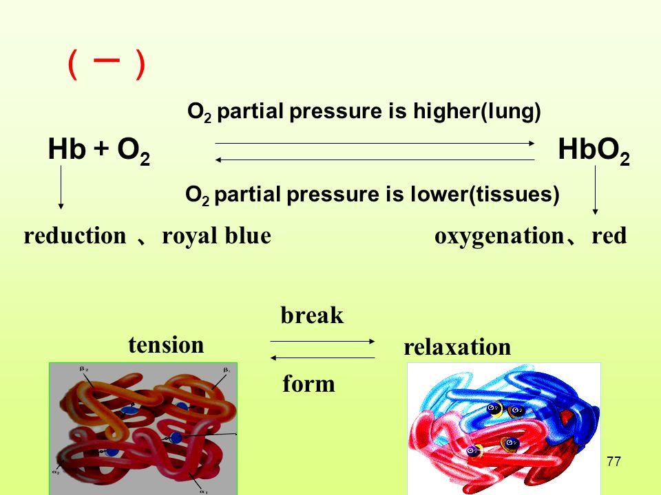 (一) Hb+O2 HbO2 reduction 、royal blue oxygenation、red break tension