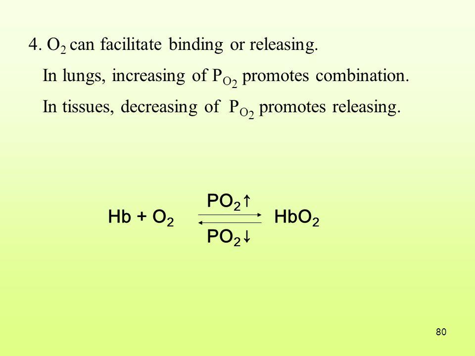4. O2 can facilitate binding or releasing.