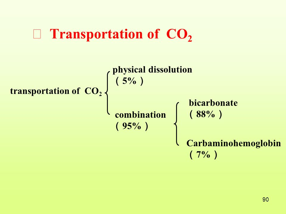 Ⅲ Transportation of CO2 physical dissolution (5%)