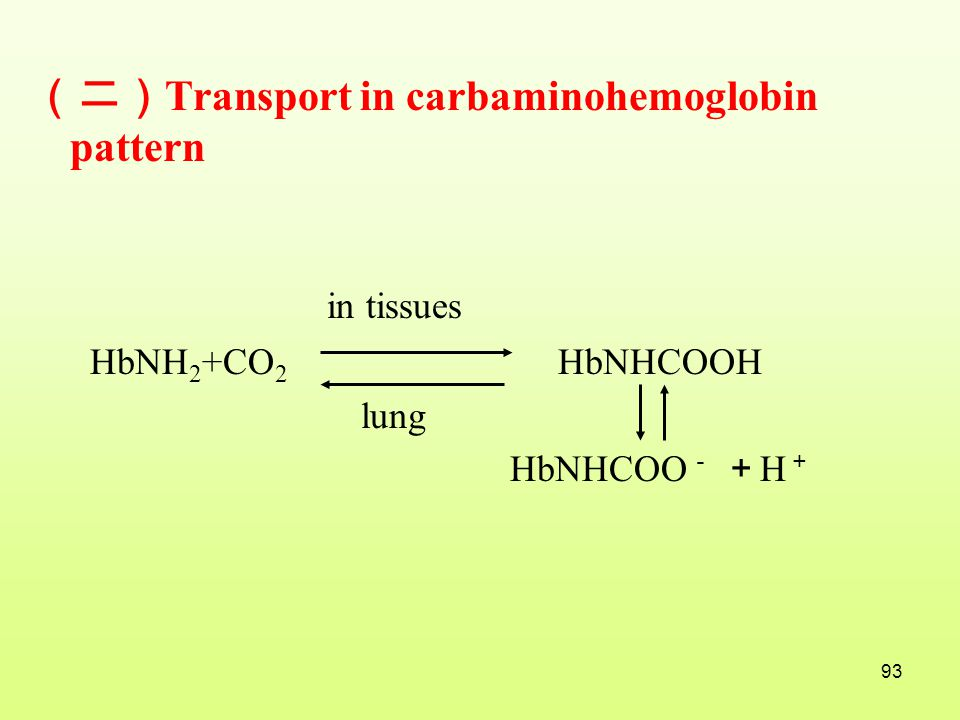 in tissues (二)Transport in carbaminohemoglobin pattern