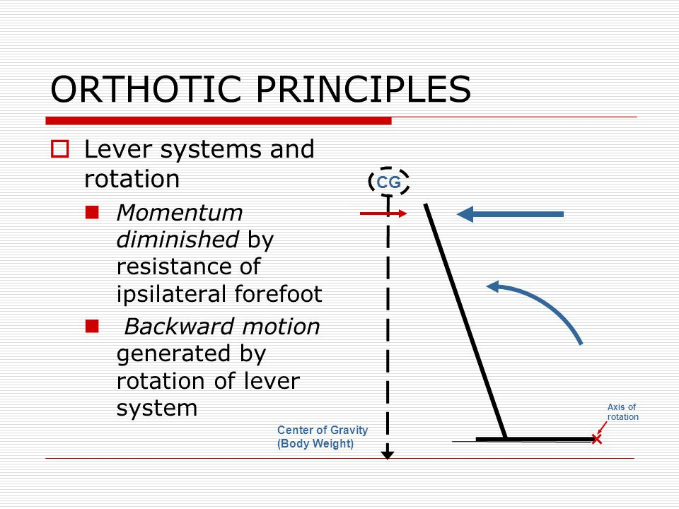 ORTHOTIC PRINCIPLES Lever systems and rotation