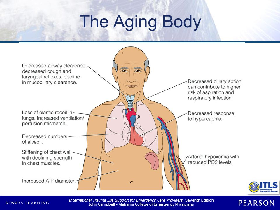 The Aging Body Cardiovascular system