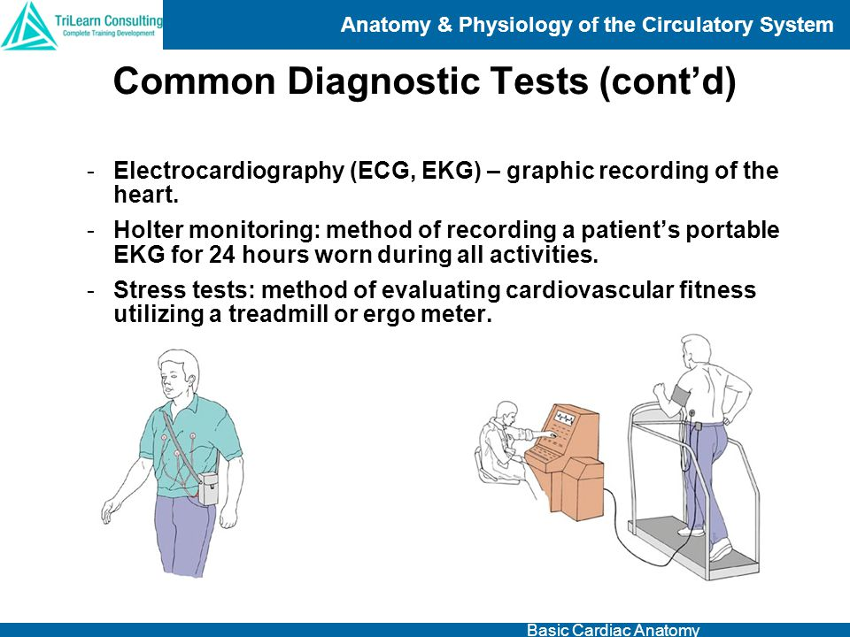 Common Diagnostic Tests (cont'd)