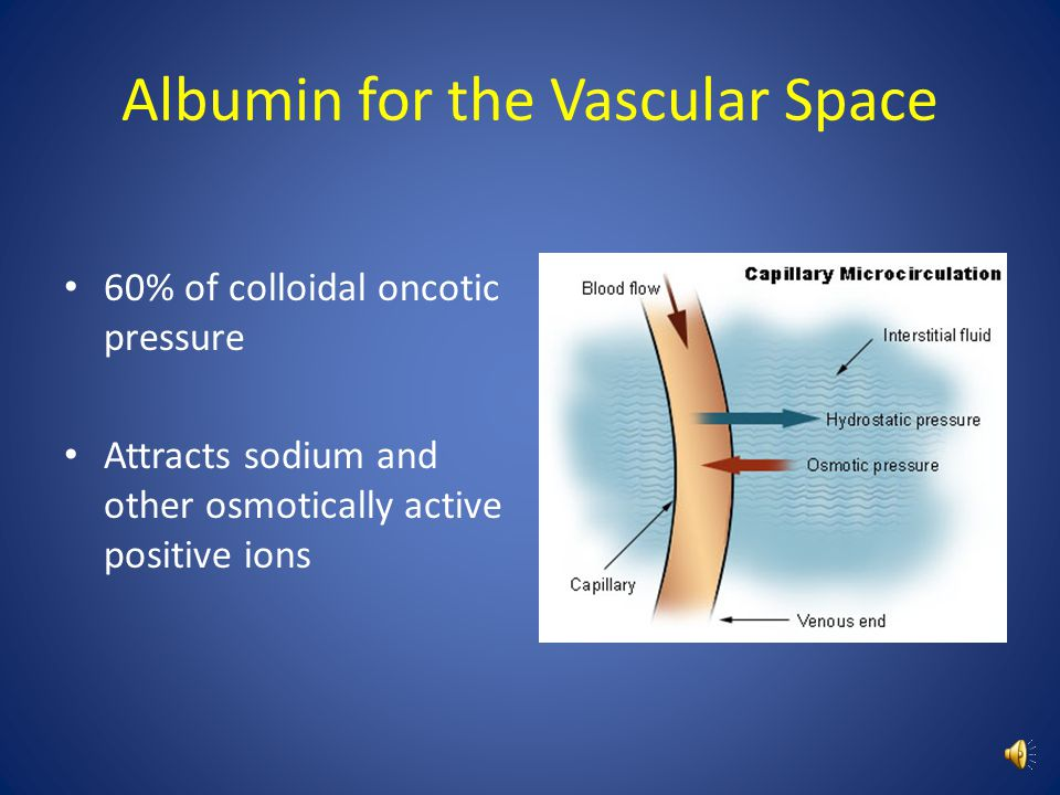 Albumin for the Vascular Space