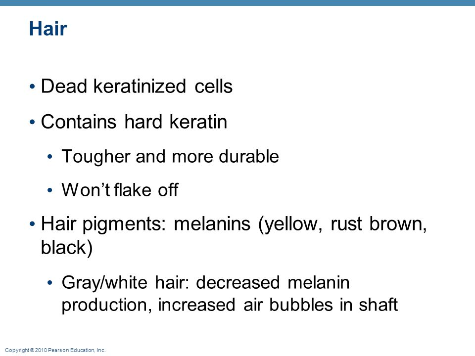 Dead keratinized cells Contains hard keratin