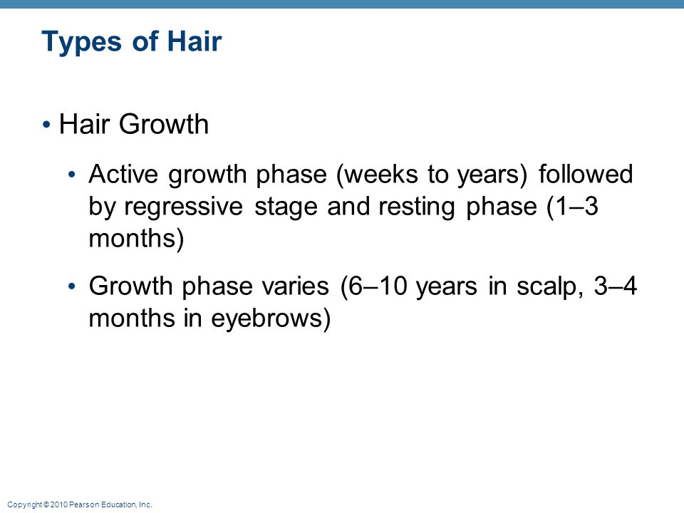 Types of Hair Hair Growth
