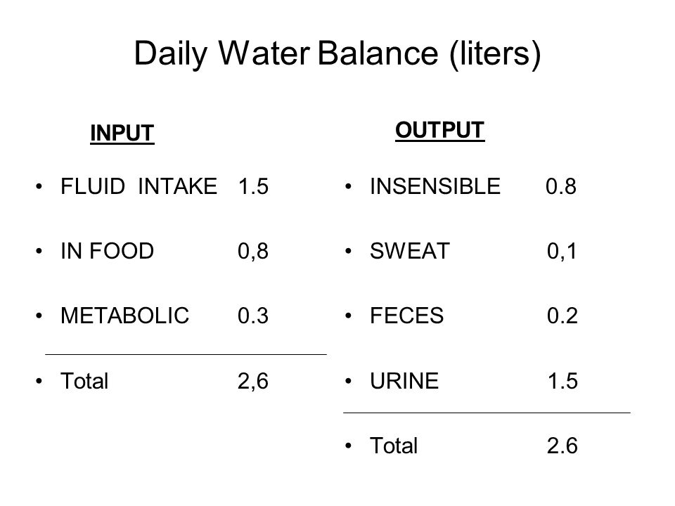 Daily Water Balance (liters)