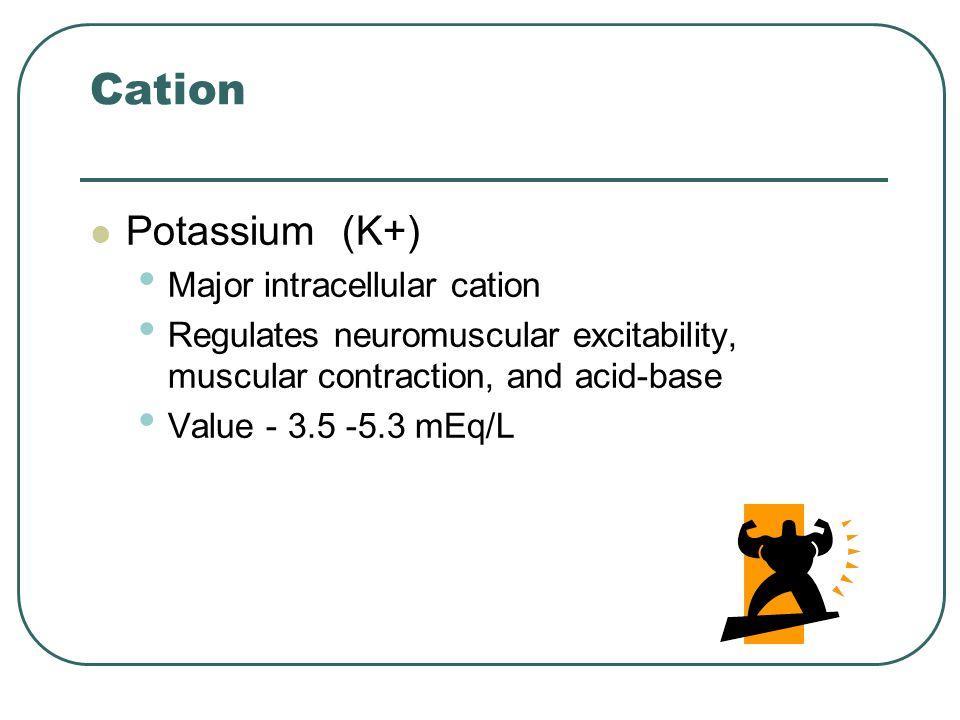 Cation Potassium (K+) Major intracellular cation